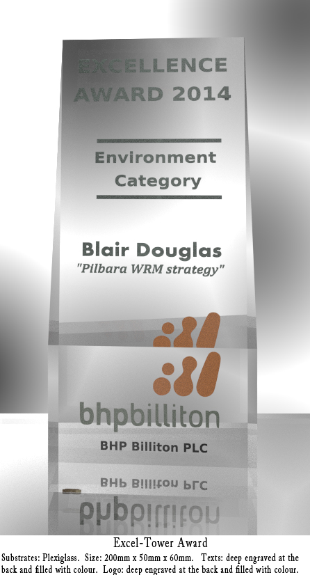 Excel-Tower Award (Environment)