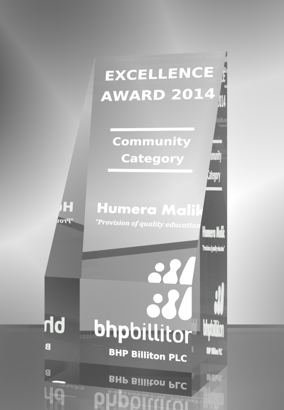 Excel-Tower Award (Community)